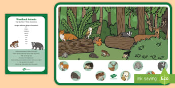 Woodland Animals Can You Find...? Poster and Prompt Card Pack - Forest, woods, animals, fox, badger, owl, deer, mouse, hedgehog, squirrel, toad