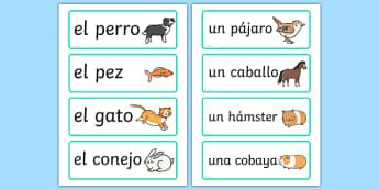 Spanish Pets Word Cards - mfl, pets, animals, cat, dog, ks2, ks1, primary, modern foreign language, display, visual aid