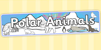 Polar Animals Display Banner - polar animals, animals, banner