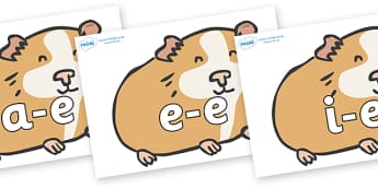 Modifying E Letters on Guinea Pigs - Modifying E, letters, modify, Phase 5, Phase five, alternative spellings for phonemes, DfES letters and Sounds