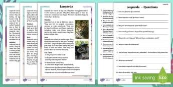 Year 2 Leopards Differentiated Reading Comprehension Activity - Children's Books, leopard, spots, patches, black, yellow, fur, teeth, claws, sleek, sharp, pointy,