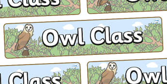 Owl Themed Classroom Display Banner - Themed banner, banner, display banner, Classroom labels, Area labels, Poster, Display, Areas