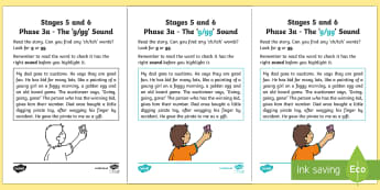 NI Linguistic Phonics Stage 5 and 6 Phase 3a, 'g, gg' Sound Activity Sheet - Linguistic Phonics, Phase 3a, Northern Ireland, 'g', 'gg', sound, sound search, text, Workshee