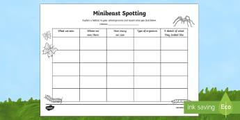 Minibeast Spotting Prompt Frame - World Around Us KS2 - Northern Ireland, Minibeasts, Living things, habitats, The World Around Us, sc