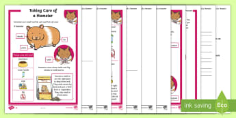 KS1 How to Look After a Hamster Differentiated Reading Comprehension Activity - Pets, pet, EYFS, KS1, take, care, look, after, family, member, members, vet, vet surgery, surgery, i
