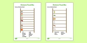 Bia Word Ladder - gaeilge, irish, food, bia, activity, crossword, word ladder, vocabulary