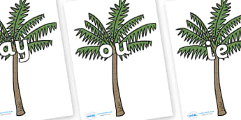 Phase 5 Phonemes on Palm Trees - Phonemes, phoneme, Phase 5, Phase five, Foundation, Literacy, Letters and Sounds, DfES, display