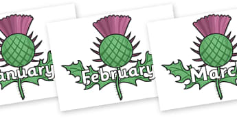 Months of the Year on Thistles - Months of the Year, Months poster, Months display, display, poster, frieze, Months, month, January, February, March, April, May, June, July, August, September