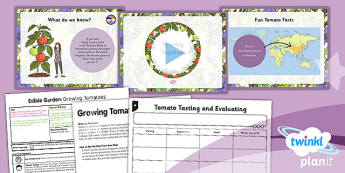 PlanIt - DT LKS2 - Edible Garden Lesson 5: Tasting and Growing Tomatoes Lesson Pack