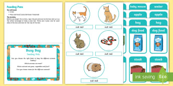 Feeding Pets Posting Busy Bag Prompt Card and Resource Pack - EYFS Pets, Animals, National Pet Month, dog, cat, rabbit, guinea pig, snake, pet food,