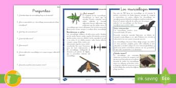 Comprensión lector: Los murciélagos - lectura, escritura, mamíferos, animales, murciélago, murciélagos, comprensión, lectora, lector,