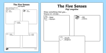 The Five Senses Drawing Activity Sheet Polish Translation-Polish-translation, worksheet