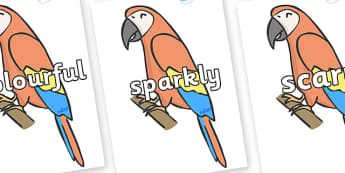 Wow Words on Parrots - Wow words, adjectives, VCOP, describing, Wow, display, poster, wow display, tasty, scary, ugly, beautiful, colourful sharp, bouncy