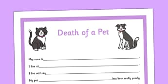 Social Story Sheet Death of a Pet Primary - social story, sheet, death, pet, primary
