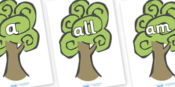 Foundation Stage 2 Keywords on Trees - FS2, CLL, keywords, Communication language and literacy,  Display, Key words, high frequency words, foundation stage literacy, DfES Letters and Sounds, Letters and Sounds, spelling