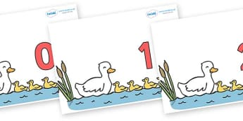 Numbers 0-50 on Five Little Ducks - 0-50, foundation stage numeracy, Number recognition, Number flashcards, counting, number frieze, Display numbers, number posters