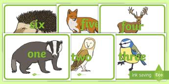 Numbers to Twenty on Woodland Animals Display Poster - Days of the Week on Woodland Animals - days of the week, weeks, days, woodland animals, animals, the