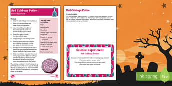 EYFS Red Cabbage Potions Science Experiment and Prompt Card Pack