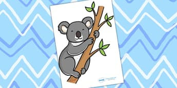 Editable Koala - Koala, display, editable, label, Australia, kangaroo, wallaby, kookaburra, wombat, crocodile, koala, possum
