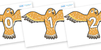 Numbers 0-100 on Owls - 0-100, foundation stage numeracy, Number recognition, Number flashcards, counting, number frieze, Display numbers, number posters