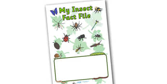 My Insect Fact File Book Cover - book cover, fact file, insect facts, minibeasts, fact file cover, fact book, factfile, insect fact file, insect fact book