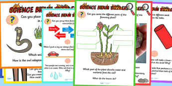 Science Brain Sizzlers Question Posters - science, posters