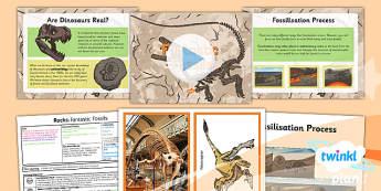 PlanIt - Science Year 3 - Rocks Lesson 3: Fantastic Fossils Lesson Pack
