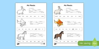 Mo Pheata Líon na Bearnaí Activity Sheet-Irish, worksheet