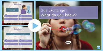 Gas Exchange Quiz PowerPoint - PowerPoint Quiz, Gas Exchange, Oxygen, Carbon Dioxide, Alveoli, Lungs, Respiratory, Breathing, Venti