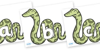 Phoneme Set on Snakes - Phoneme set, phonemes, phoneme, Letters and Sounds, DfES, display, Phase 1, Phase 2, Phase 3, Phase 5, Foundation, Literacy