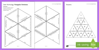Gene Technology Tarsia Triangular Dominoes - Tarsia, gcse, biology, genetics, genetic energineering, genetic modification, GE, GM, genes, DNA, li