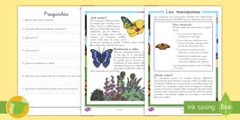 Comprensión lector: Las mariposas - lectura, leer, lee, escritura, escribir, bichos, insectos, mariposas, comprender, comprensión, lect