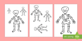 Measuring Skeletons Activity
