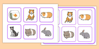Pets Matching Cards and Board - pets, matching cards, board, matching