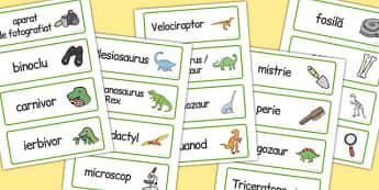 La Muzeu de  Dinosauri, joc de rol, cartonase - imagini & cuvinte, Romanian