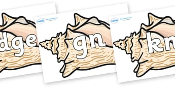 Silent Letters on Conch Shells - Silent Letters, silent letter, letter blend, consonant, consonants, digraph, trigraph, A-Z letters, literacy, alphabet, letters, alternative sounds