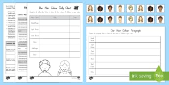 Our Hair Colour Statistics Level 1 Lesson Pack - NZ Statistics (Back to School), hair colour, statistics, inquiry, enquiry, level 1, year 1, year 2,