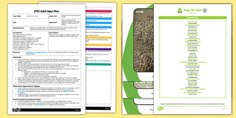 Life Cycle of a Frog Movement Activity EYFS Adult Input Plan and Resource Pack - adult focus, frogs