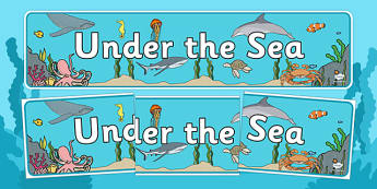 Under the Sea Display Banner - Under the sea, sea, seaside, water, tide, fish, sea creatures, shark, whale, marine, dolphin, starfish, waves, sand