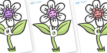 Phase 2 Phonemes on Flowers - Phonemes, phoneme, Phase 2, Phase two, Foundation, Literacy, Letters and Sounds, DfES, display