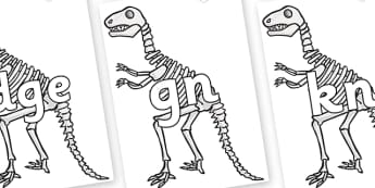Silent Letters on Dinosaur Skeletons - Silent Letters, silent letter, letter blend, consonant, consonants, digraph, trigraph, A-Z letters, literacy, alphabet, letters, alternative sounds