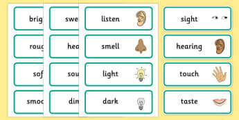 Senses Topic Word Cards - Smell, sight, sound, hearing, taste, touch, ourselves, all about me, my body, senses, emotions, family, body, growth