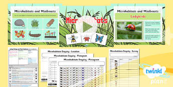 PlanIt - Science Year 2 - Living Things and TheirHabitats Lesson 3: Microhabitats - science, ks1, key stage 1, planning, resources, topic, nature, animals, places, homes, display, activities, insects, creepy crawlies,