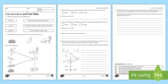 KS3 Interdependence and Food Webs Homework Activity Sheet - Homework, feeding relationship, food chain, food web, eating, consumer, worksheet, producer, trophic