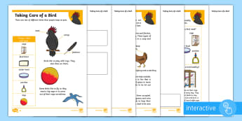KS1 How to Look After a Bird Differentiated Comprehension Go Respond Activity Sheets - Pets, pet, EYFS, KS1, take, care, look, after, family, member, members, vet, vet surgery, surgery, i
