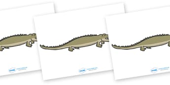 Editable Crocodile - crocodile, display, editable, label, Australia, kangaroo, wallaby, kookaburra, wombat, crocodile, koala, possum