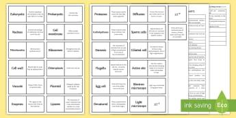 Edexcel Key Biology Concepts Word Loops - Word Loops, eukaryotic, prokaryotic, ribosomes, mitochondria, enzymes, denatured