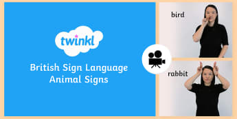 Animal Signs in British Sign Language (BSL) Video Clip - british sign language, bsl, deaf, hard of hearing, HH, HoH, Ddeaf, D/deaf, deafblind, communication,