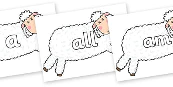 Foundation Stage 2 Keywords on Hullabaloo Sheep to Support Teaching on Farmyard Hullabaloo - FS2, CLL, keywords, Communication language and literacy,  Display, Key words, high frequency words, foundation stage literacy, DfES Letters and Sounds, Lette