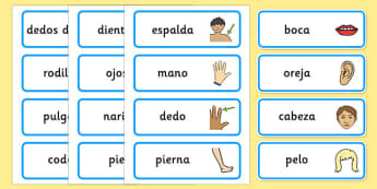 Spanish Parts of the Body Word Cards - spanish, body, parts